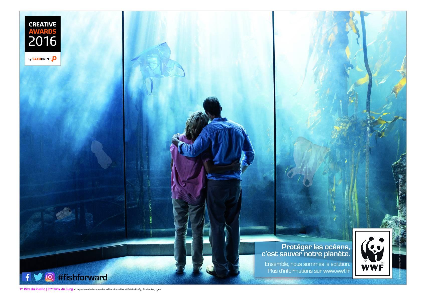 Concours Grande Cause Aquarium