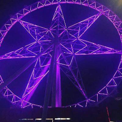 Illumination en violet de monuments Français et internationaux pour #Worldibdday