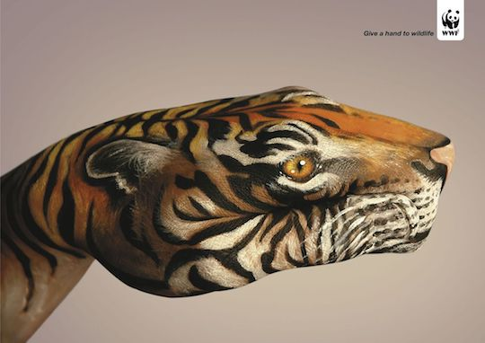 Give a hand to wildlife Tigre
